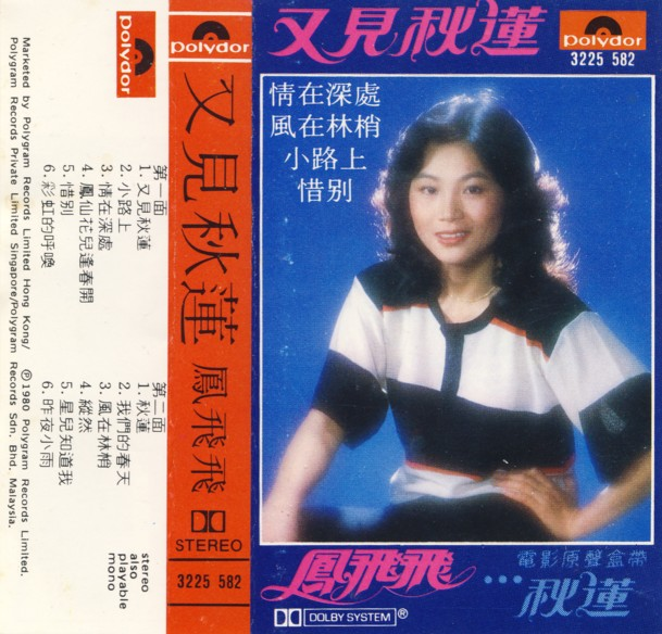... old cassette tapes last week when I found this gem by FENG FEI FEI